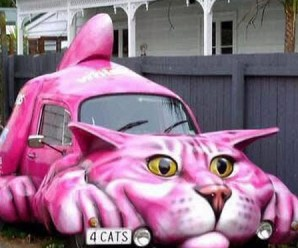 Top 10 Vehicles That Look Like Cats