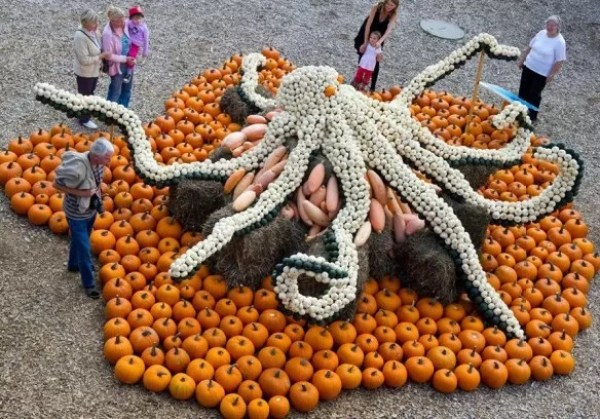 Octopus installation made of pumpkins