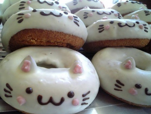 Cat Donuts