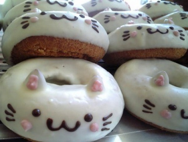 Cat Donuts