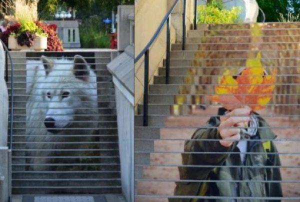 Printed artwork on stairs