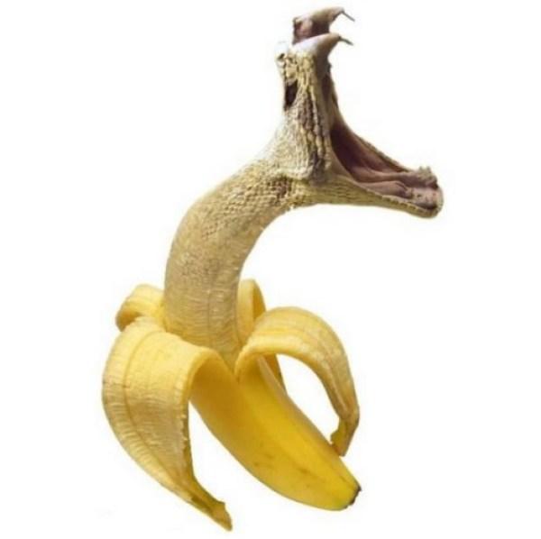 Photoshopped Banana Made to Look Like a Snake