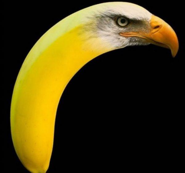 Photoshopped Banana Made to Look Like an Eagle