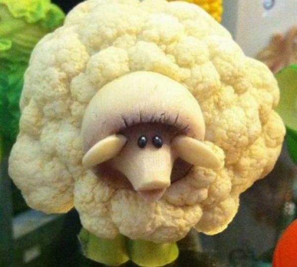 Sheep Inspired Cauliflower