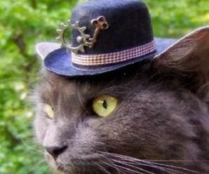 Ten Amazing Steampunk Hats Any Steampunker Will Love