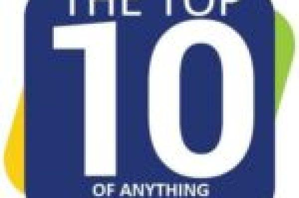 Grumpy Cat in a Christmas Santa Hat