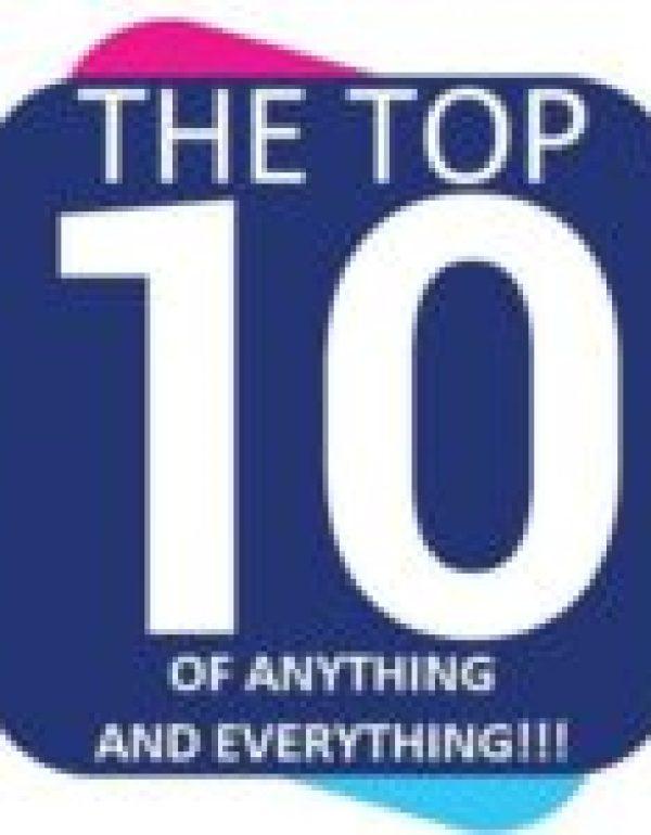 Dog in Elf Costume