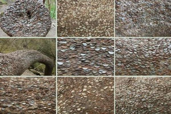 Tree covered in coins