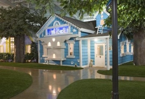 Top 10 Creative Inventionland Themed Offices