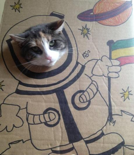 Cat art in the style of a Spaceman