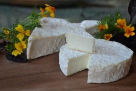 Ewe Bloom Cheese