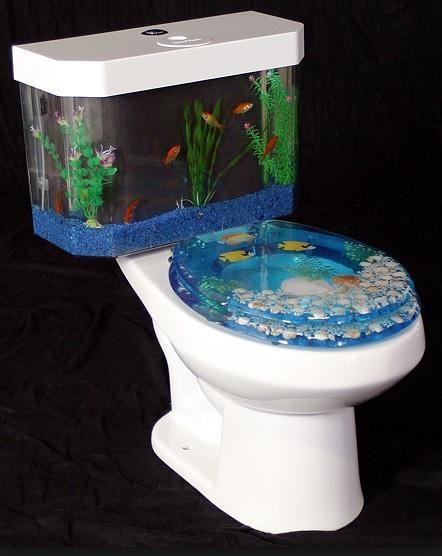 Aquarium Inspired toilet