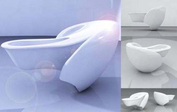 Designer Toilet