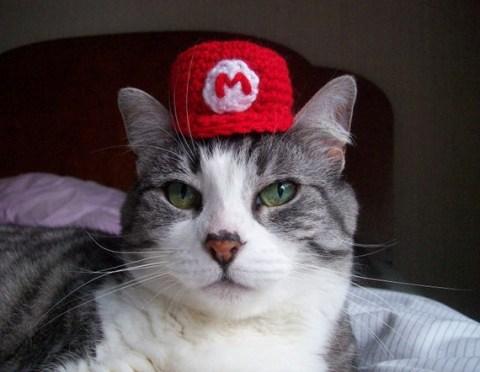 Cat Wearing Tiny Super Mario Cap