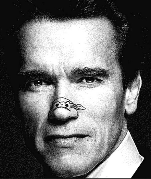 Top 10 Celebrity Ninja Turtle Noses