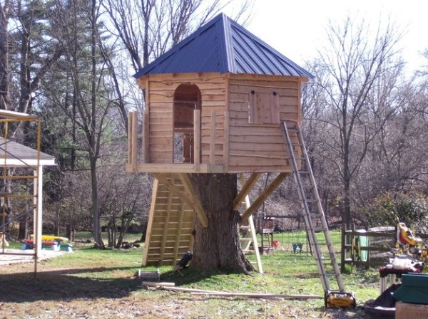 Ten Amazing Things to Can Do With Tree Stumps You Need to See