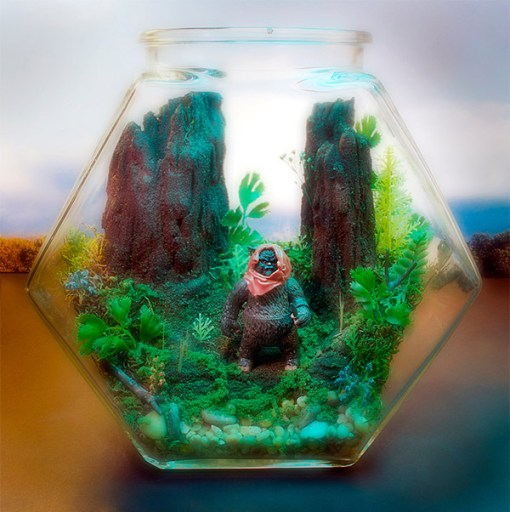 Top 10 Amazing Fantasy Themed Terrariums