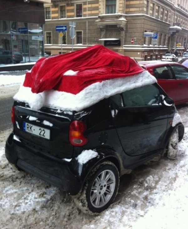 Top 10 Unusual Things Wearing Santa Hats