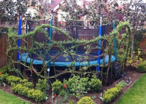 Trampoline Used as a Garden Feature