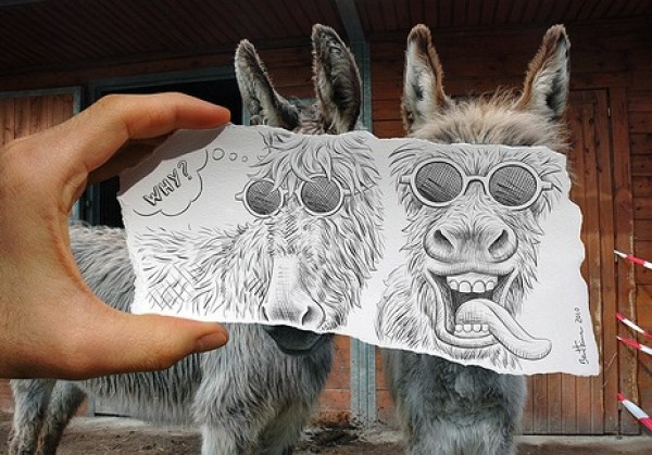 Top 10 Images of Pencil vs Camera