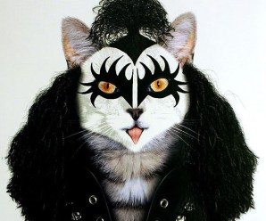 Top 10 Cats Made To Look Like Celebrities