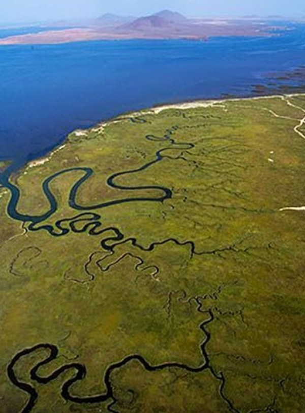 Top 10 Amazing & Beautiful Salt Marshes