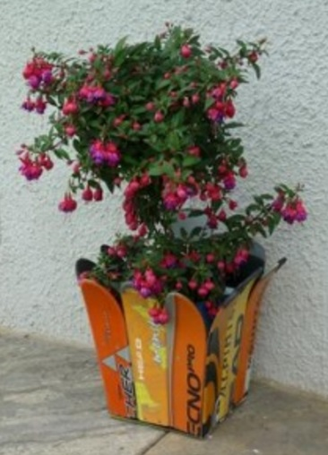 Snow Skis Transformed Into A Plant Pot