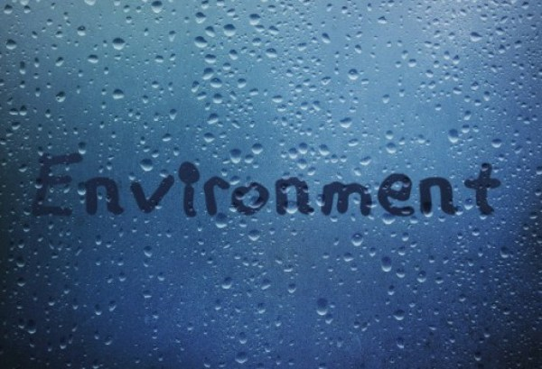 Keep On Blogging: Environment