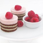 Top 10 Moreish Recipes For Mousse Cakes