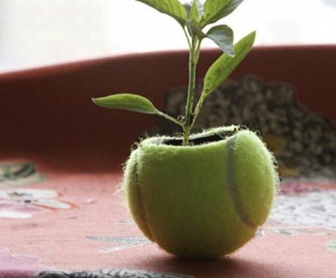 Top 10 Things You Can Make With Old Tennis Balls