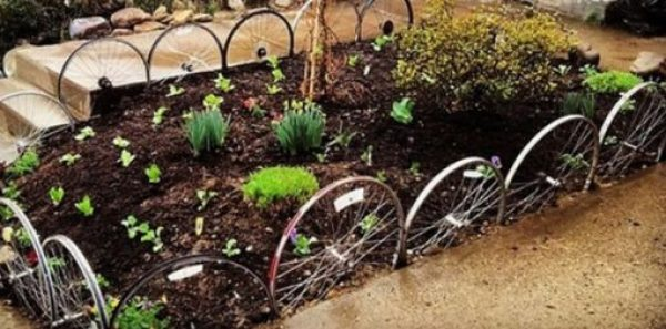 Bicycle Wheels Transformed Into Garden Edging