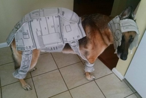 Star Wars: AT-AT Walker Dog Costume Fail