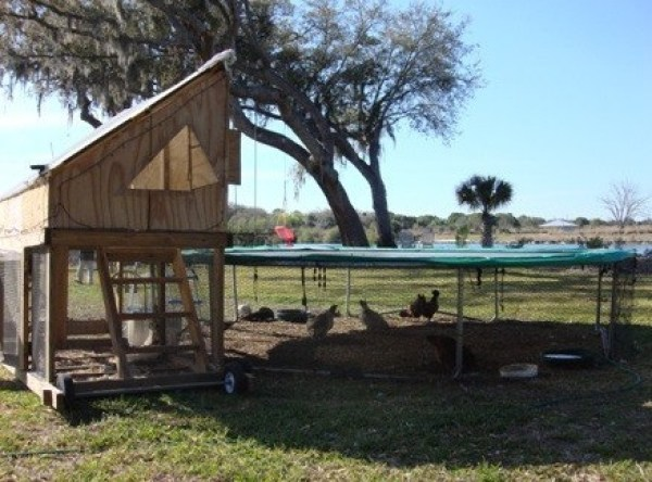 Chicken Coop Made From a Trampoline