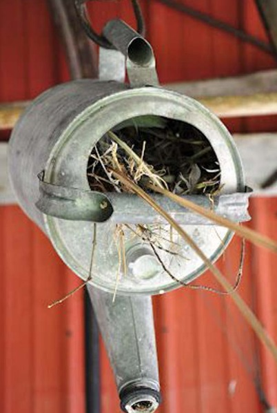 Birdhouse Made From a Watering Can