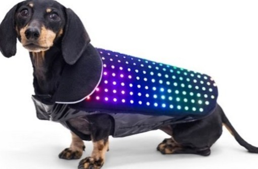 Smartphone Controlled LED Dog Vest