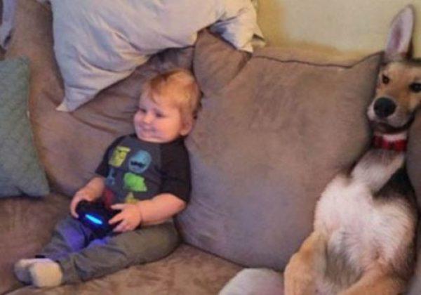 Dog Copying Kid