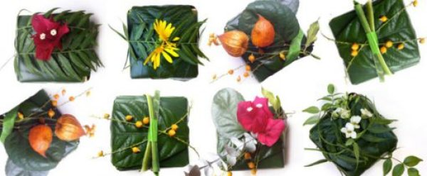 Gift Wrapped in Leaves and Vines