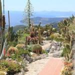 Top 10 Amazing And Unusual Tourist Attractions In Monaco