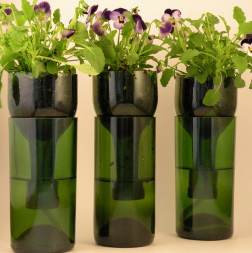 Grow Planter Made from a Champagne Bottle