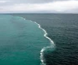 The Top 10 Largest Oceans and Seas in the Entire World