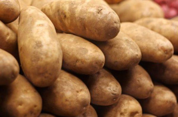 Russia Potatoes