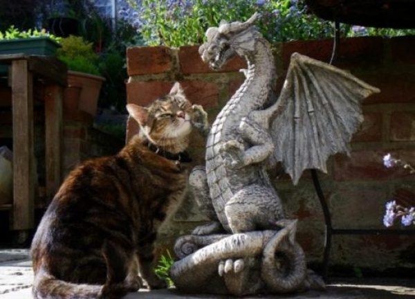 Cat Rubbing on a Dragon Statue