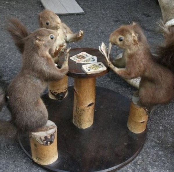 Squirrels Playing Poker
