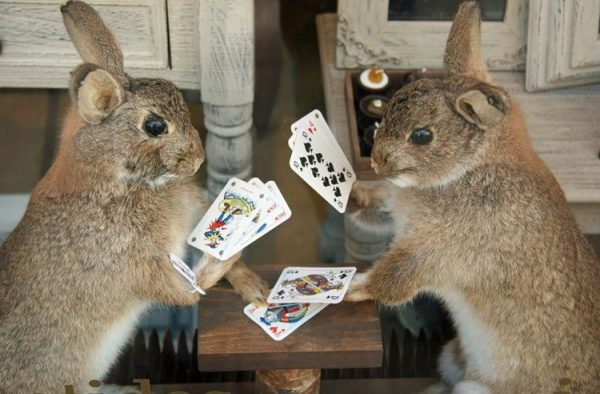 Rabbits Playing Poker