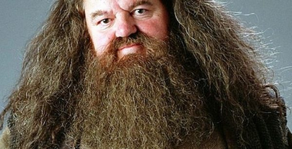 Beards (Pogonophobia)