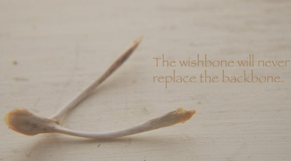 Pulling the Wishbone