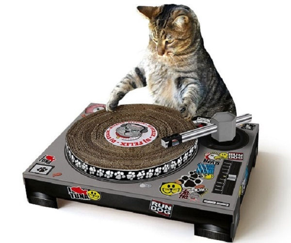 Cat DJ Scratching Post