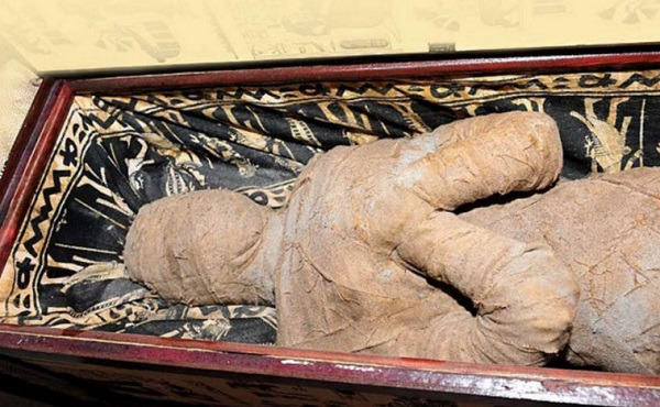 The Mummy Found in a Attic
