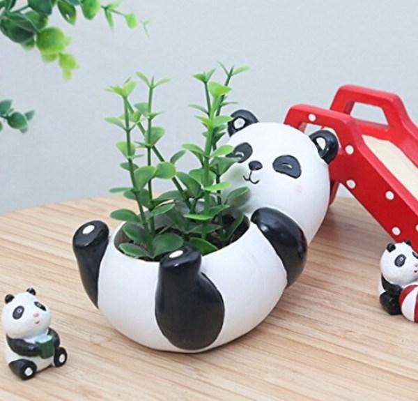 Panda Plant Container