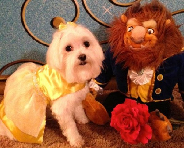 Ten of the Very Best Beauty and the Beast Gift Ideas